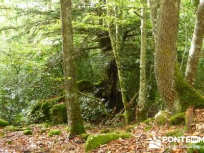 Cañones y nacimento del Ebro - Monte Hijedo;fotos senderismo;marcas de montaña
